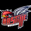 Bastille-logo